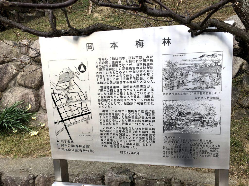 岡本梅林公園08